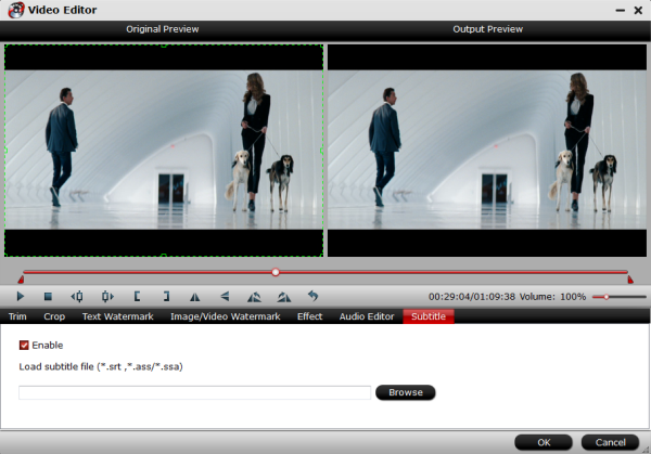 PPT/PPS/PPTX to DVD Converter for Windows 7/8/8.1 Add-subtitle