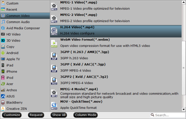 Choose Videopad supported video format